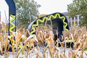 Privy2 installation among autumn corn stalks