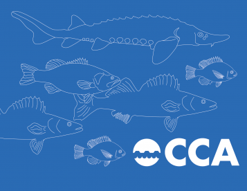 CCA graphic with fish and logo